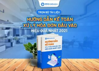ebook-hoa-don-dau-vao